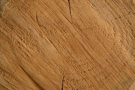 kerf: a sawn piece of wood Stock Photo