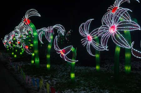 utrecht: Lillies at China Lights Utrecht