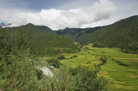 bhutan: View over the rice fields in Bhutan Stock Photo