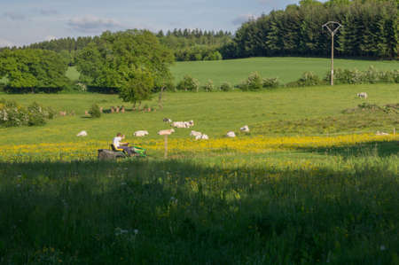 wallonie: A farmer is mowing the lawn