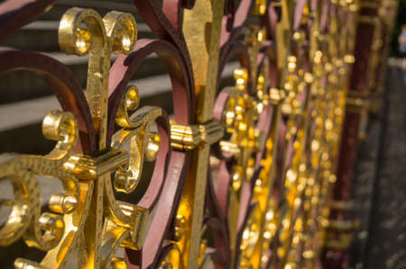 close uo: A close up of a gold plated gate