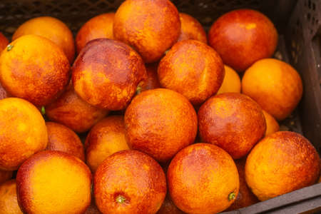 blood oranges at the fruit market