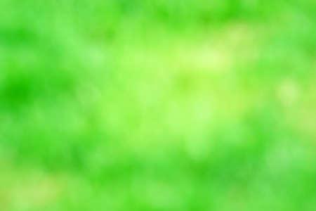 green background texture summer natural background abstraction summer Banco de Imagens
