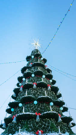 Christmas tree against blue sky. Vertical photo. Christmas and new year holiday concept Banco de Imagens