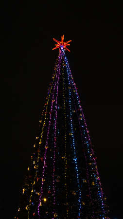 Christmas tree with lights, ornaments, balls, against a night sky. Banco de Imagens