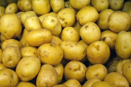 raw potato background, texture, sale of fresh vegetables Reklamní fotografie