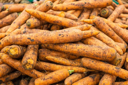 Fresh carrots at the market for sale. Vegetables on the counter. Background picture