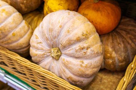Close-up freshly harvested pumpkins on at the farmer's market. 免版税图像 - 151858289