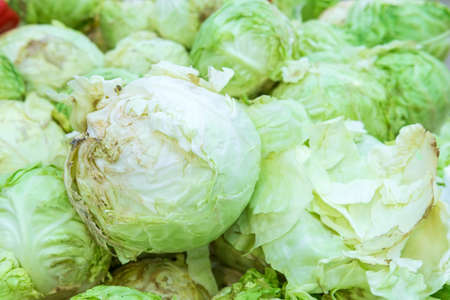 cabbage on the counter of a grocery store supermarket. fresh young green cabbage. food background. soft focus