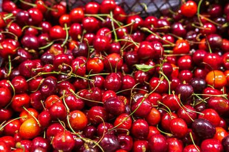 Sweet cherry. Antioxidant, natural, vitamin, organic berry sale of berries and fruits 免版税图像