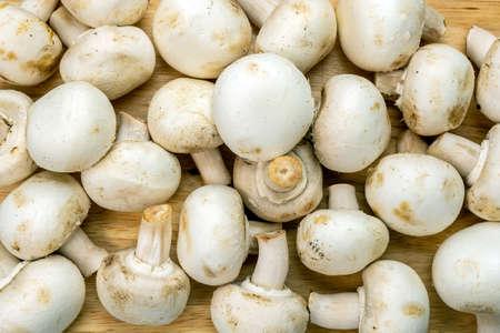 raw Fresh ripe pure white fungus champignon mushroom on wooden background, texture. 免版税图像