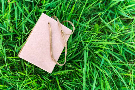 kraft paper bag. Template for branding identity on a natural green background. space for copying text 写真素材