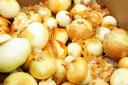 organic onions on the shelf display for sale in the local grocery store for background. Fresh vegetables concept. 写真素材