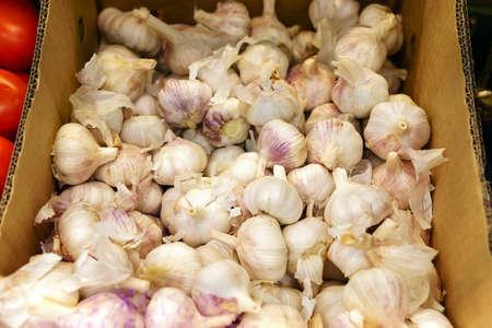 white garlic on shelf at supermarket. garlic in market. 写真素材