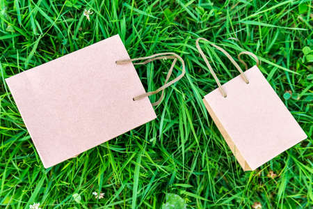 paper bag of kraft paper on a green background with space for copying text. mockup 免版税图像