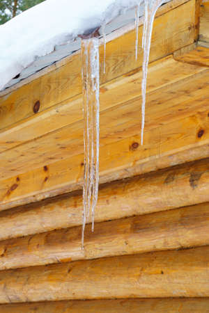 Melting snow forms an icicle. temperature change, spring. Vertical photo