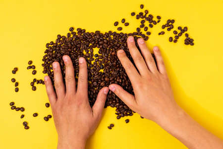 coffee beans on a yellow background, other grains scattered around, concept view from above. Stok Fotoğraf