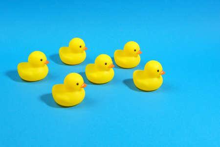 yellow rubber ducks on a blue background. Minimal design Stok Fotoğraf
