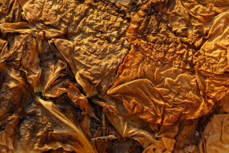 Dry tobacco leaves close-up. Background texture. Tobacco cultivation for cigarettes and cigars