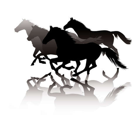 beast ranch: Horses in gallop against white