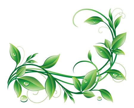 element for design: Abstract floral background. Element for design. Illustration