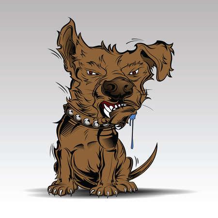 Brown Angry dog