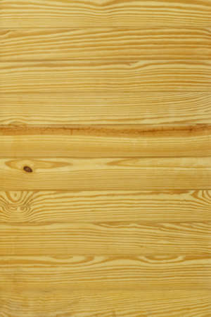 Realistic texture of pale wood Imagens