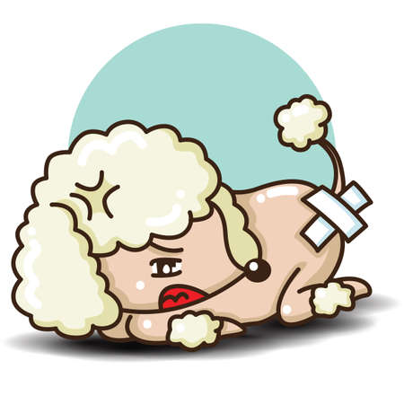 Cute Poodle dog cartoon., Animal ans pet concept. 일러스트