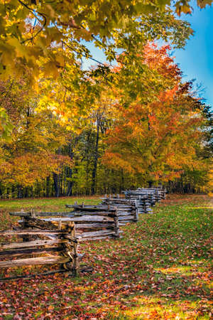 diagonal: Diagonal fence along a country road in autumn. Stock Photo