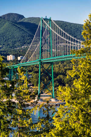 stanley: Side view of the Lions Gate Bridge, from Stanley Park.