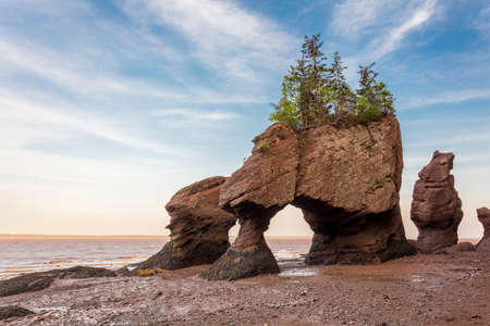 The icon Hopewell Rocks in New Brunswich. Popular tourist destination, the Bay of Fundy has the highest tides in the world. 版權商用圖片 - 82499087