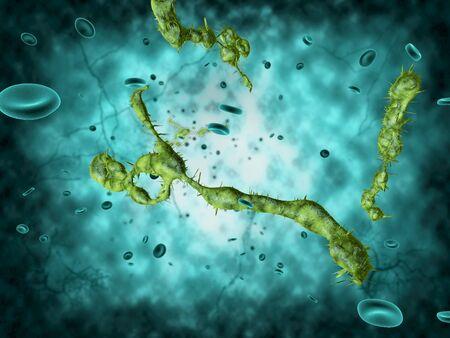 Medical illustration of the Ebola virus
