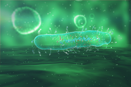 Medical illustration of the Bacteria