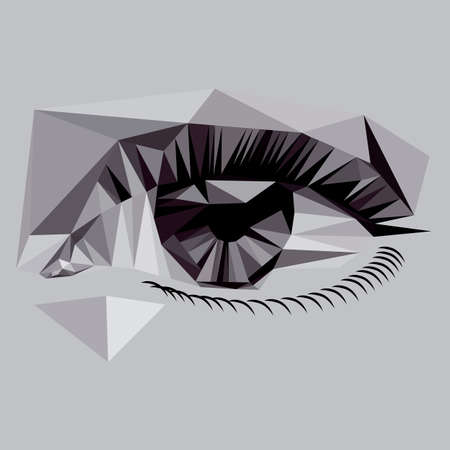 tennager: Low Poly eye vector Illustration