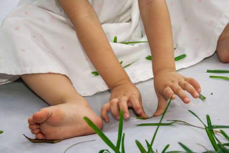 Child playing with grass photo