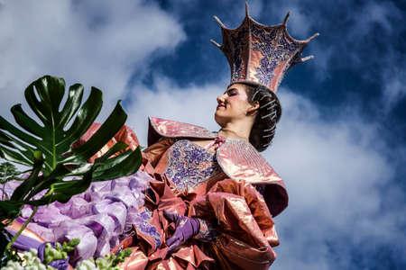 NICE - FRANCE - 01 mars 2014: Carnaval de Nice, bataille de fleurs. C'est le principal événement hivernal de la Riviera Banque d'images - 97176091