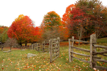 Fence line leading into the woods that are full of beautiful fall colors. Stock Photo