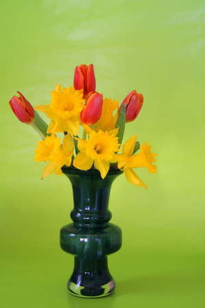 mother'sday: A bouquet of daffodils and tulips on a green background. Stock Photo