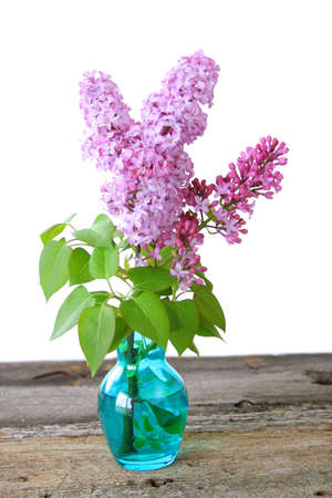 A Beautiful bouquet of Lilacs in a blue vase against a white background. photo