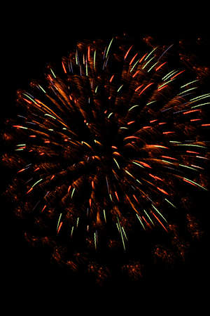 A single display of fireworks against a black sky on the fourth of July. photo
