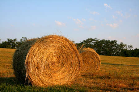 evening out: Hay bales on a late summers evening out in the country.