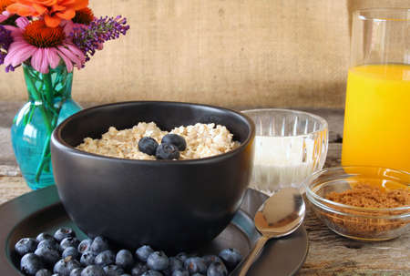 A bowl of oatmeal with fresh blueberries, milk, and brown sugar.