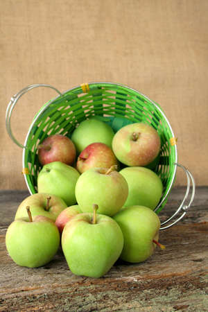 spilt: A spilt basket of fresh picked apples. Copy space available. Stock Photo