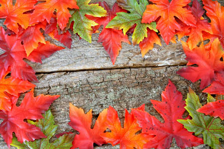 A selection of fall colored leaves made of silk that create a frame on an old piece of wood.