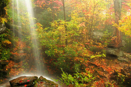 A waterfall captured during fall of the year while the fog rolls in on a rainy day. Stock Photo