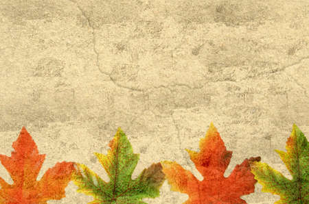 combines: Grunge background with autumn leaves, and lots of copy-space. Combines textures of paper and stone.
