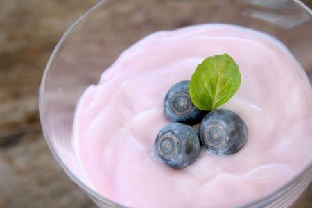 Dish of yogurt garnished with freh blueberries and a mint leaf.