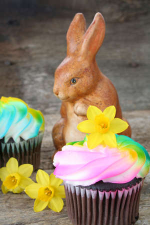 Cupcakes with pastel colored icing surrounded by fresh daffodils and a fake bunny rabbit. photo