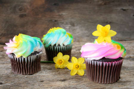 Cupcakes with spring colors and decorated with fresh cut daffodils. photo