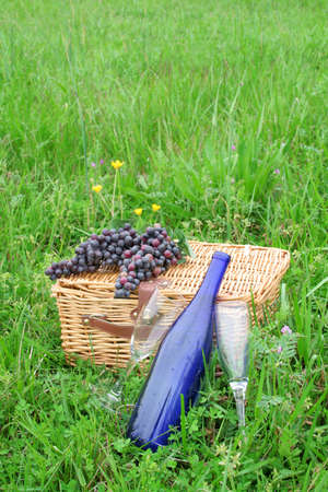 Two empty wine glasses with a wine bottle along with a picnic basket and grapes out in a beautiful Spring green field. photo
